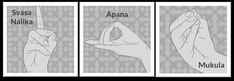 Katharina Holch - Blog - Finger Yoga - heilende Mudras