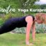 Katharina Holch - Blog - Yoga Kurzprogramm
