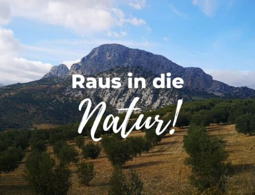 Raus in die Natur!