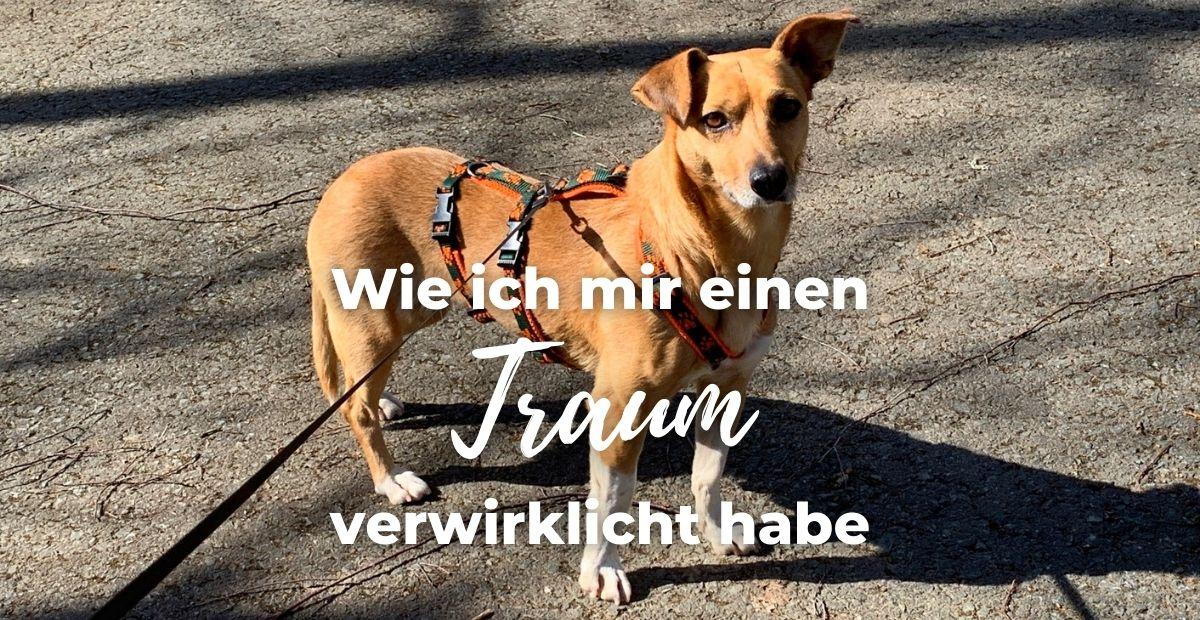 Katharina Holch - Blog - Traum verwirklicht