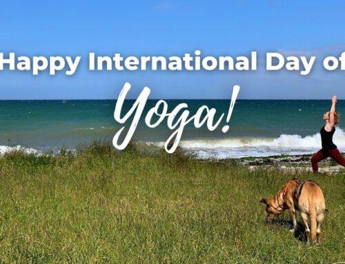 Happy International Day of Yoga! 3 Ideen zum Feiern