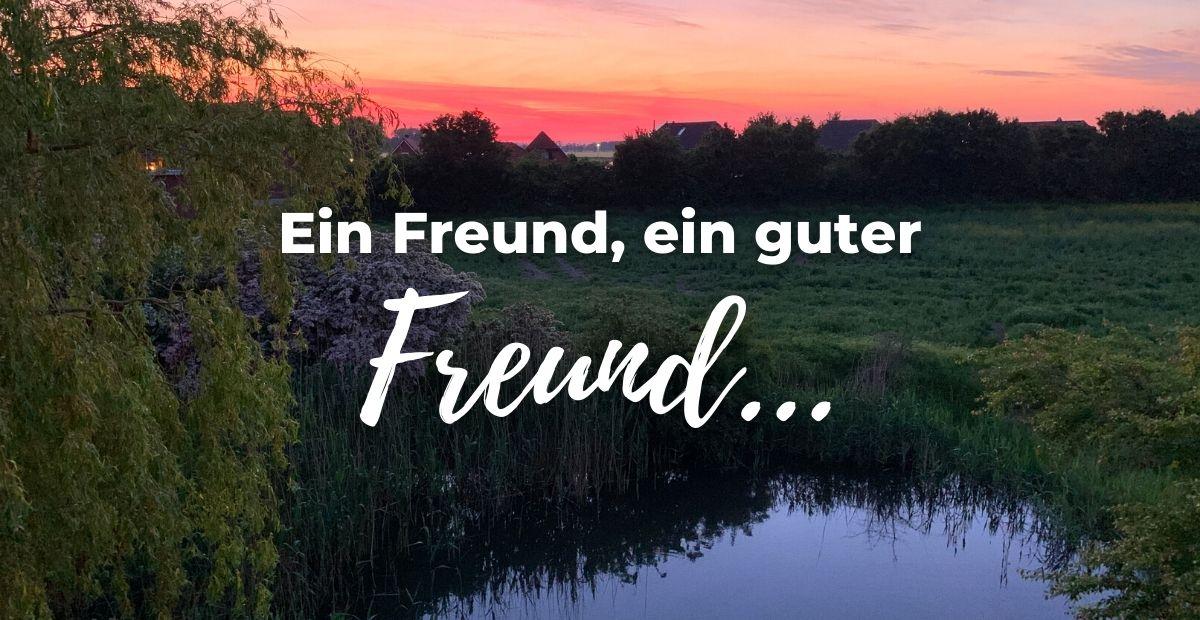 Katharina Holch - Blog - Ein Freund ein guter Freund