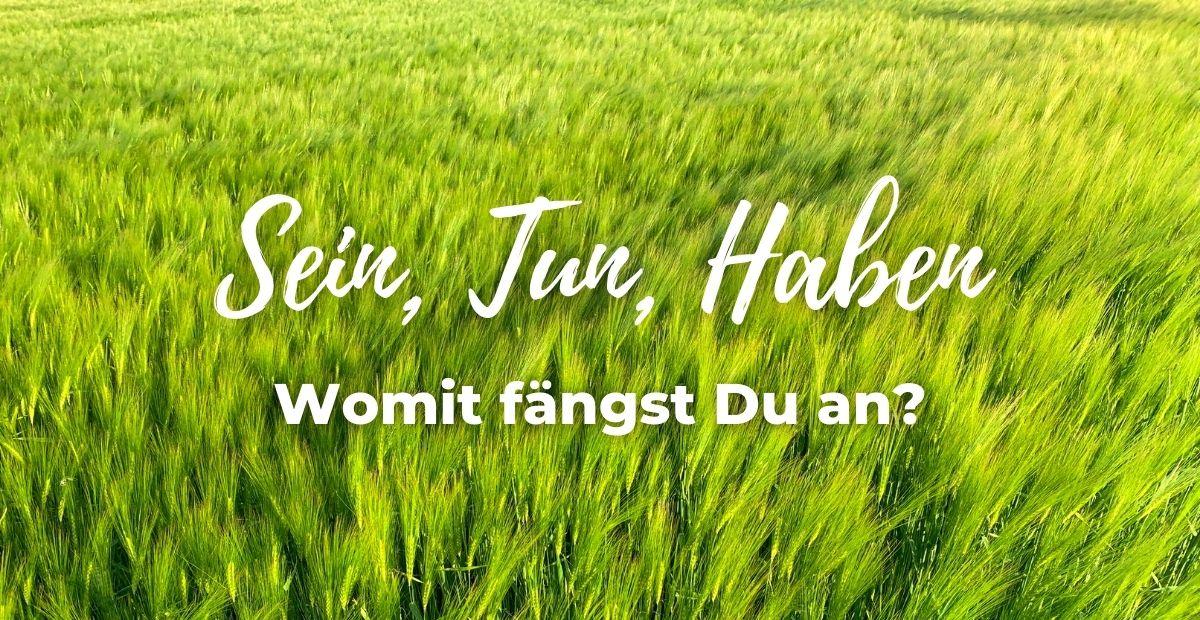 Katharina Holch - Blog - Sein Tun Haben