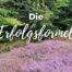 Katharina Holch - Blog - Die Erfolgsformel
